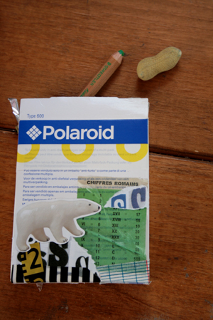 ポラロイドの空き箱に2011